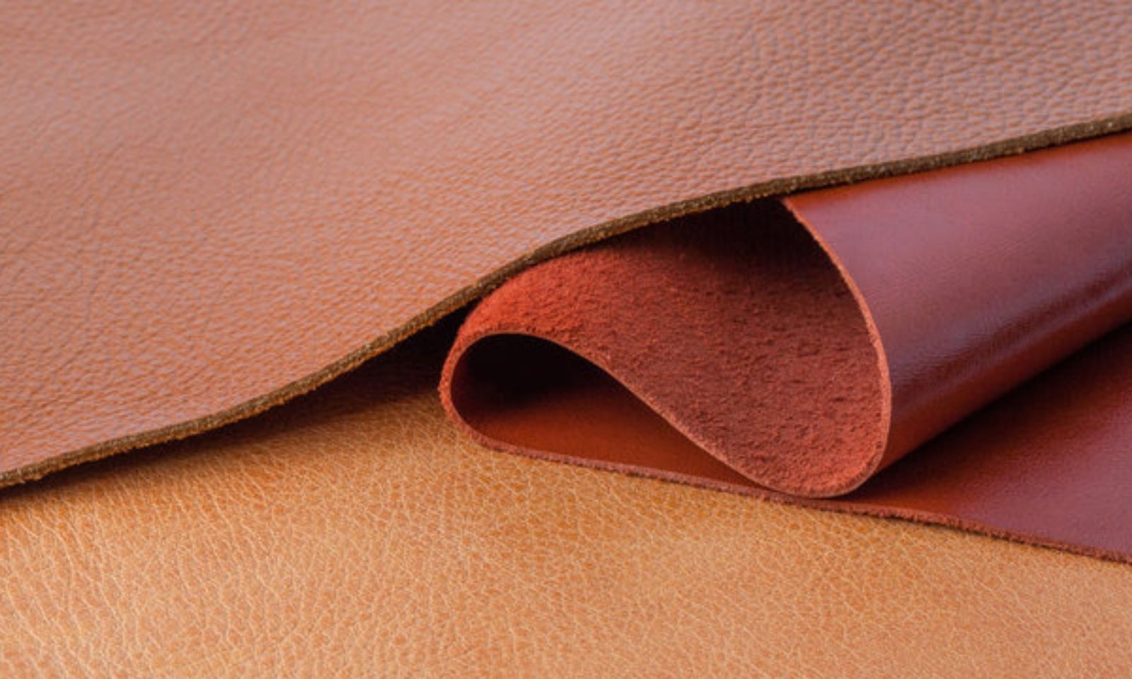 Leather Swatch Reilly