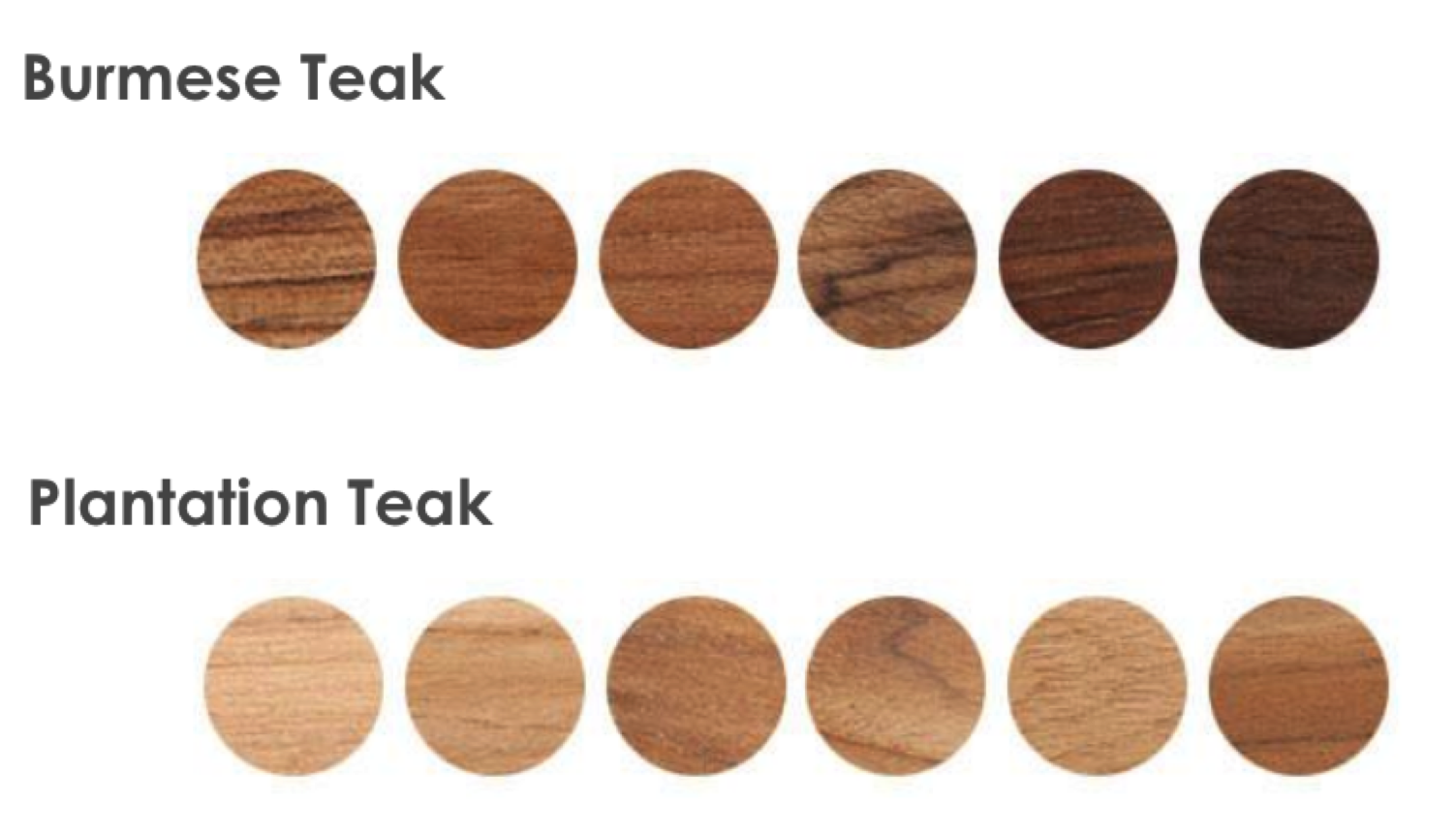 All You Need To Know About Teak